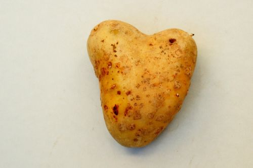 heart tuber potato