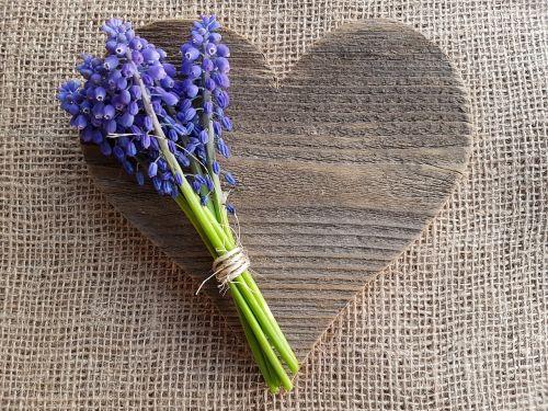 heart love spring