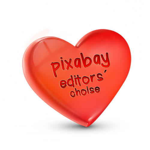 heart love pixabay