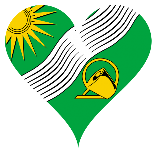 heart love sun