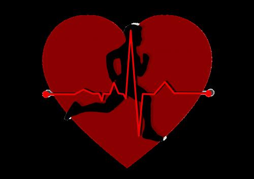 heart pulse circuit