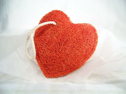 heart valentine love