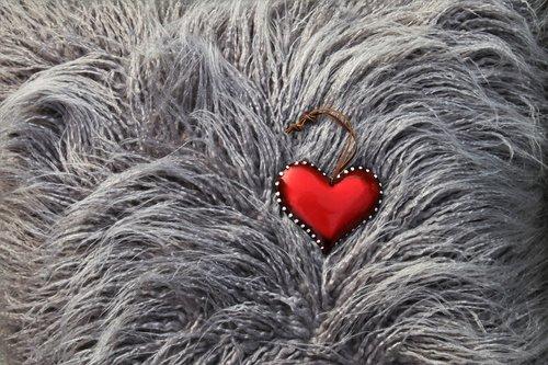 heart  pillow  love