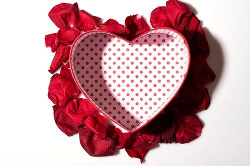 heart  valentine's day  red