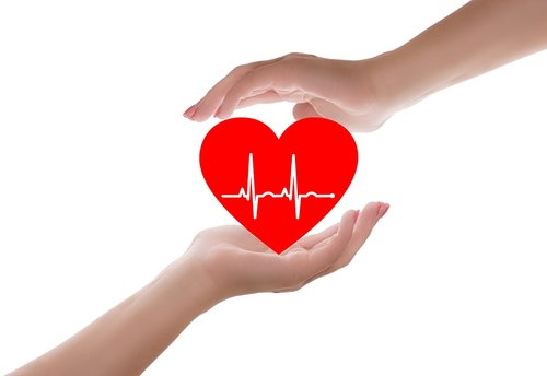heart  heart care  heart health