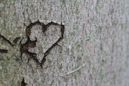 heart declaration of love love