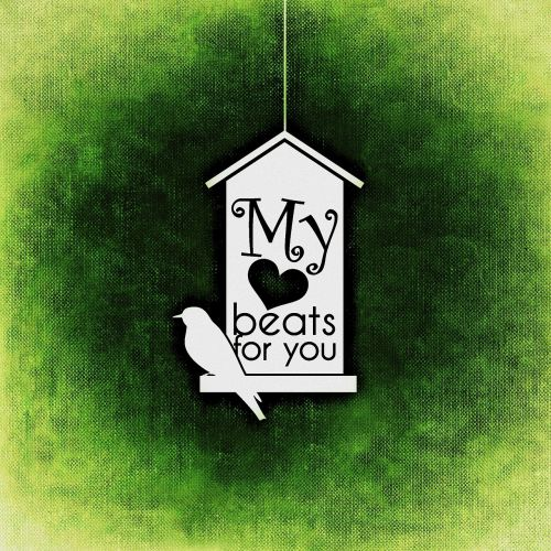 heart,valentine,love,bird,aviary,greeting card,background,romance,feelings,free illustrations,free images,royalty free