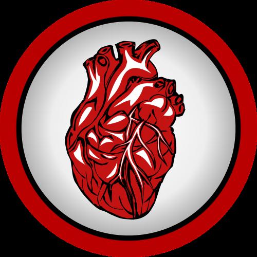 heart heartbeat medical