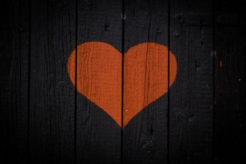 heart wood red