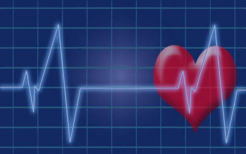 heartbeat pulse heart