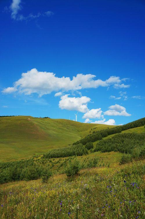hebei fengning bashang grassland blue sky white cloud
