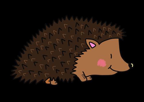 hedgehog  autumn  cute animals