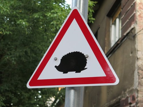 hedgehogs  hazard  rules of the road