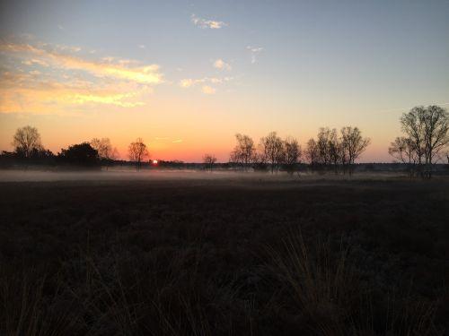 heide evening nature