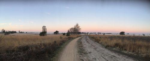 heide nature landscape