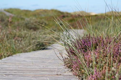 heide away boardwalk