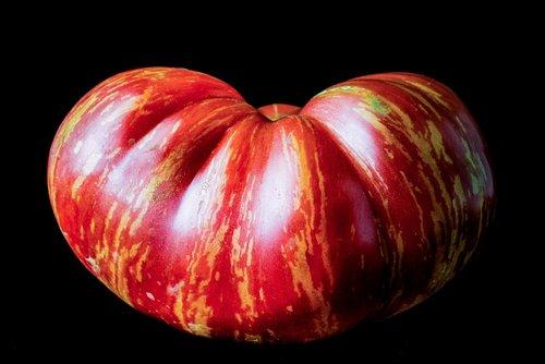 heirloom tomato  isolated  on black background