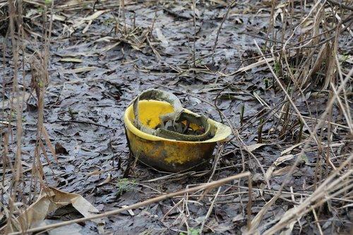 helm  nature  yellow