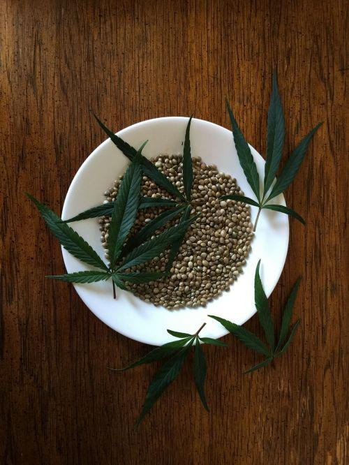 hemp seeds sativa food