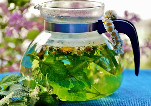 herbal  tea  the infusion