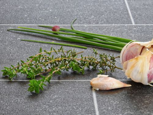 herbs rosemary leek