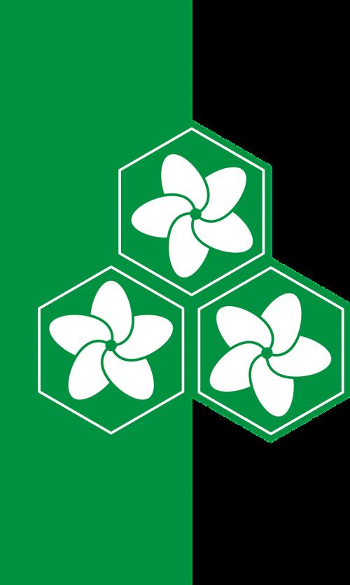hexagons flower green