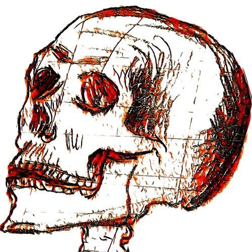 hidden skull orange