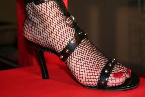 high heeled shoe shoe strap shoe