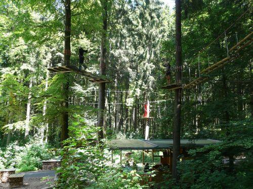high ropes course climb drex