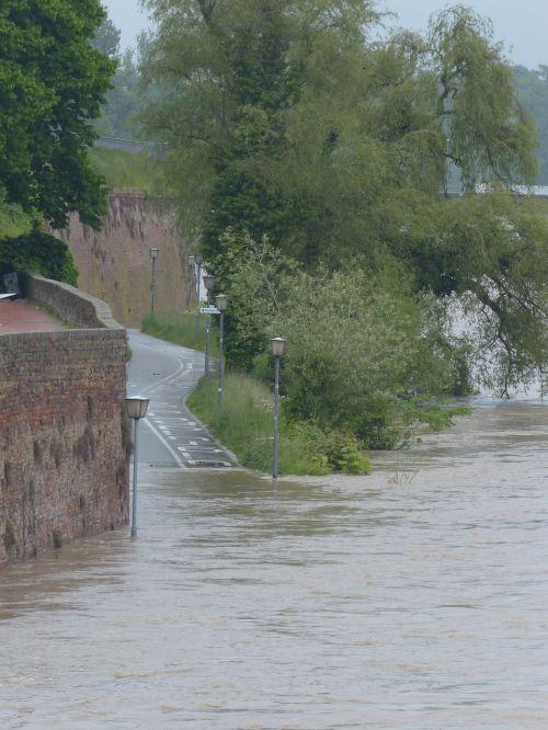 high water danube road