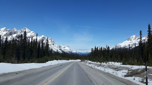highway mountains icefields