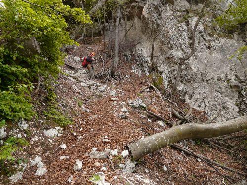 hike trail climber