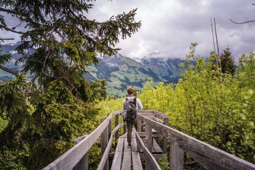 hike summer boardwalk