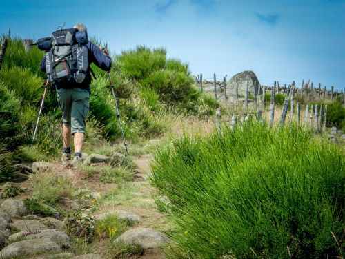 hiker aubrac path