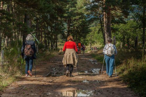 hikers walkers path