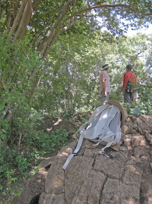 Hikers With Backpack On A Rock