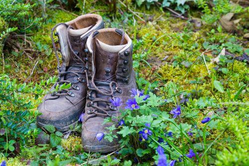 hiking nature hike