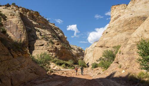 hiking tourists trail