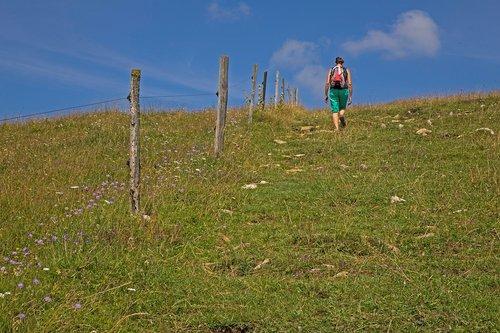 hiking  jurassic pasture  pasture