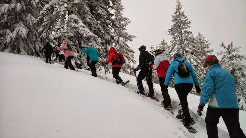 hiking snowshoeing tour