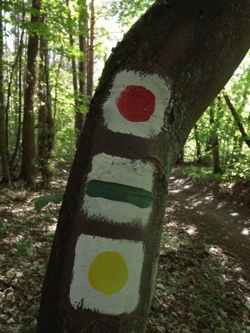 hiking trails signpost mark