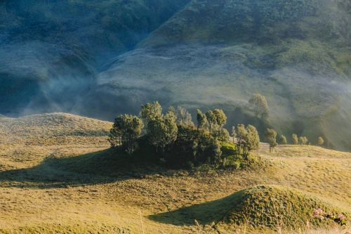 hill morning bromo