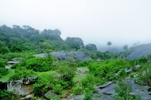 Hill Station In Monsoon 2