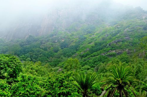 Hill Station In Monsoon 6