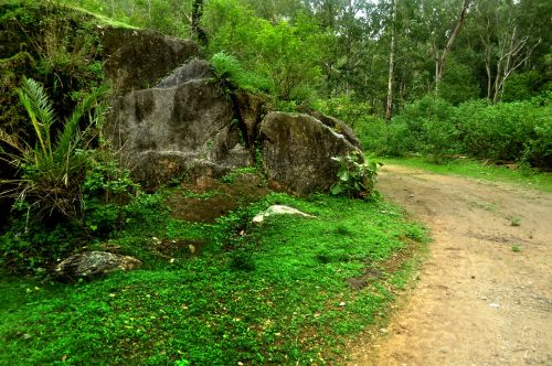 Hill Station In Monsoon 7