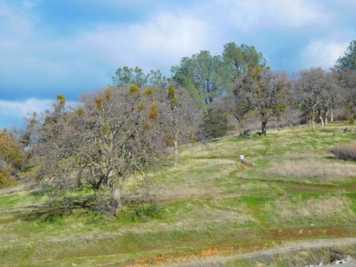Hills At Folsom Lake 636