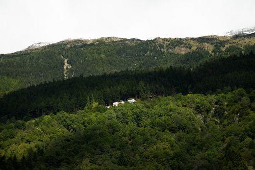 hillside house landscape