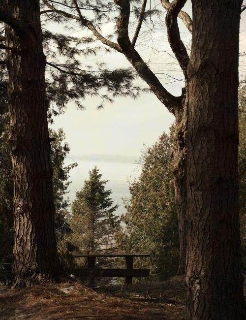 kempingas, stovyklavietė, lauke, stovykla, žygis, žygiai, baidarės, kalnas, kalvos, medis, medžiai, miškai, miškas, iškylai, grafika, vaizdas, išblukęs, senas, vintage, tyrinėti, tyrinėti, fonas, vasara, pavasaris, nuotrauka, nuotrauka, kalvos vaizdas