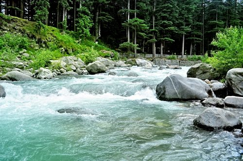 Himalayan Creek 10