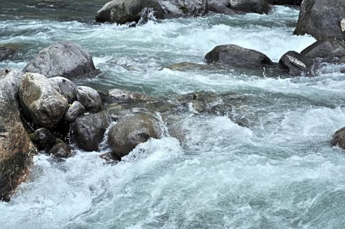 srautas, upė, upelis, himalajiečių, gamta, vanduo, miškas, akmenys, kraštovaizdis, Himalajų upelis 4